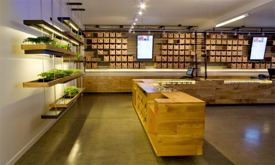 Montreal Dispensary