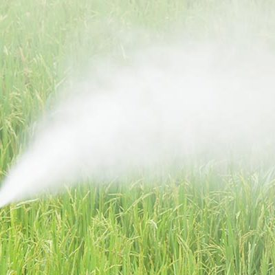 Significance of pesticides in our life