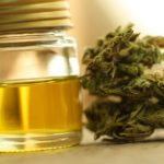 What Really Is CBD and How Does It Work?