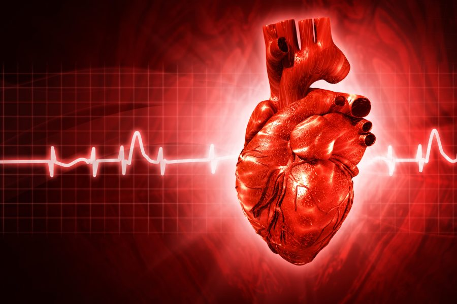 Living With Atrial Fibrillation: A Basic Guide