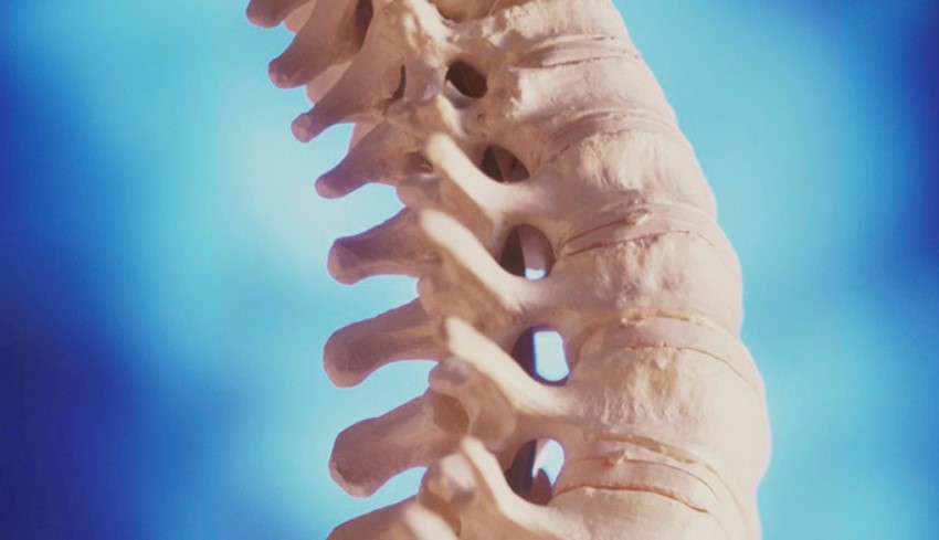 BONE DENSITY: WHY IS IT VITAL FOR HEALTH