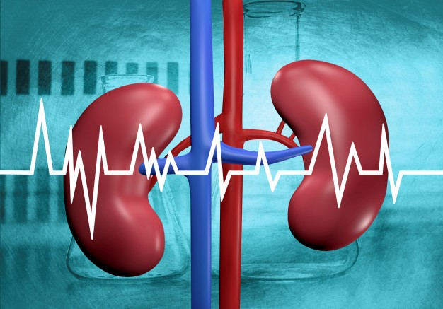 Suffering from kidney failure? Here is the best oil for kidney failure.